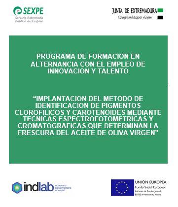 Programa de formación y empleo